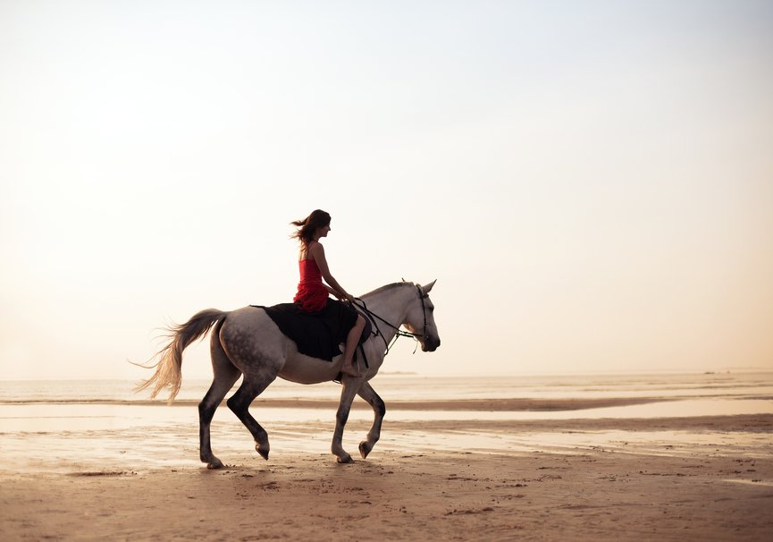 Medium bigstock the image of a girl riding a h 26993024