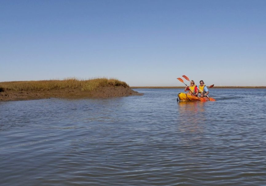 Medium kayak tour in ria formosa 34 1024x768