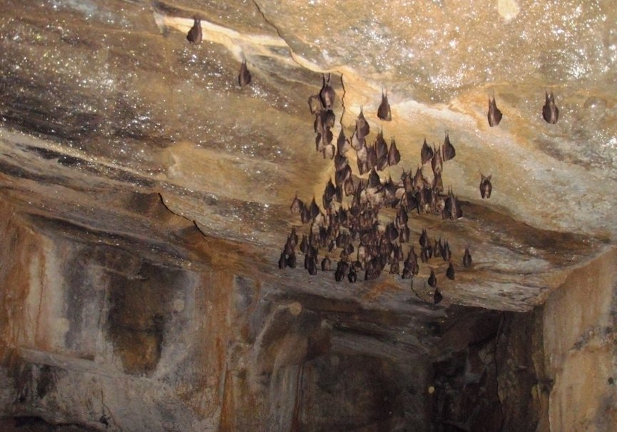 Medium cueva1