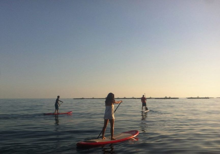 Medium almeria curso basico paddlesurf