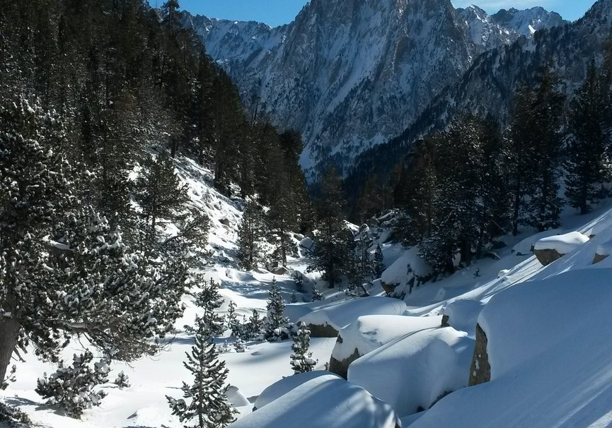 Medium raquetas de nieve4