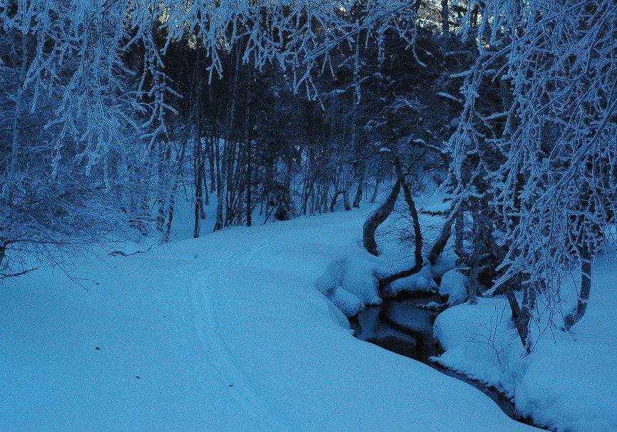 Medium raquetas de nieve5