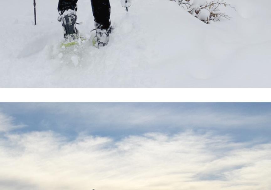 Medium alquiler de raquetas de nieve  silvestres ezcaray 2