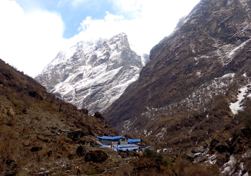 Medium deurali on the way to base camp
