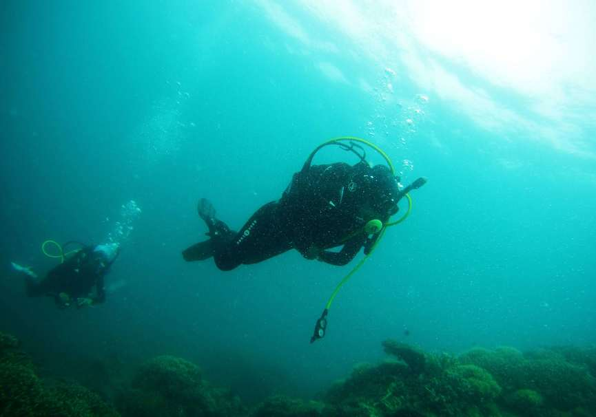 Medium discover scuba diving algarve