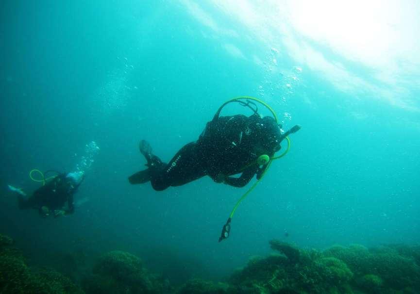 Medium discover scuba diving algarve