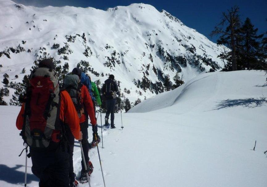 Medium trekking snow aragon