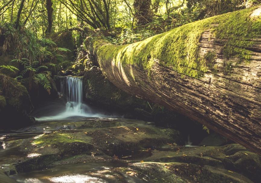 Medium pedra e auga 5105