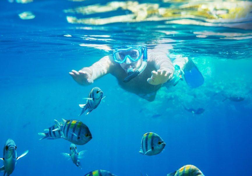 Medium gallery snorkeling 2 1024x1001