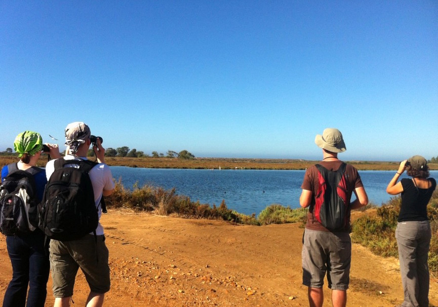 Medium guided walks in ria formosa algarve 17 1024x723