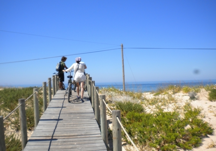 Medium bike tour ria formosa 01