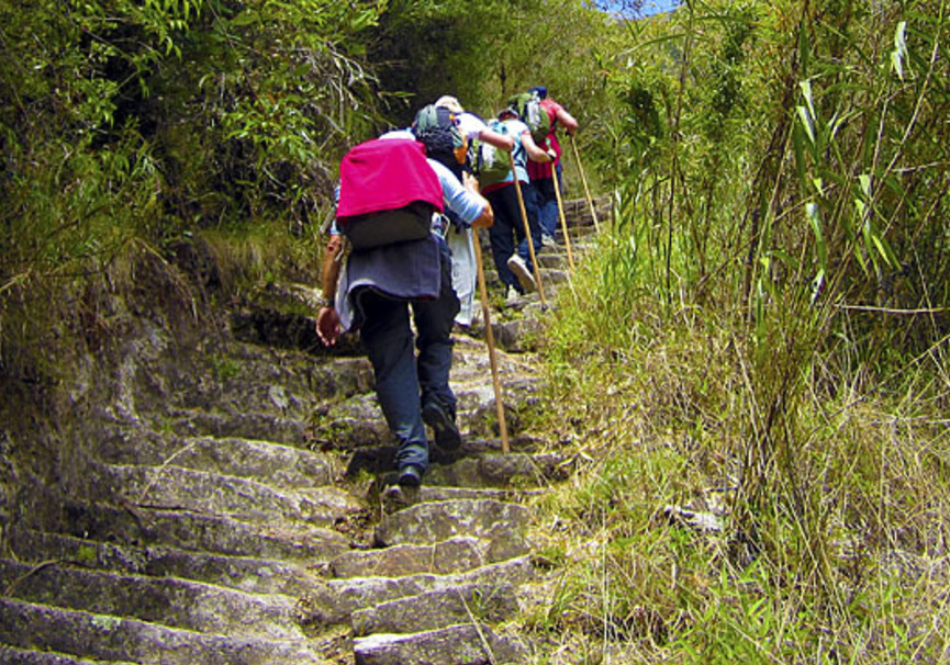 Medium inca trail 2d machu picchu 05