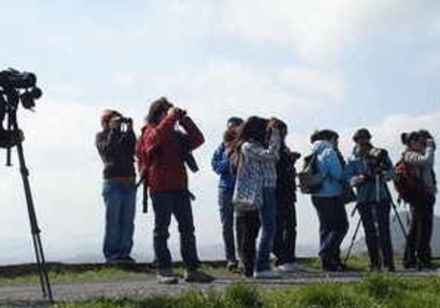 Medium turismo