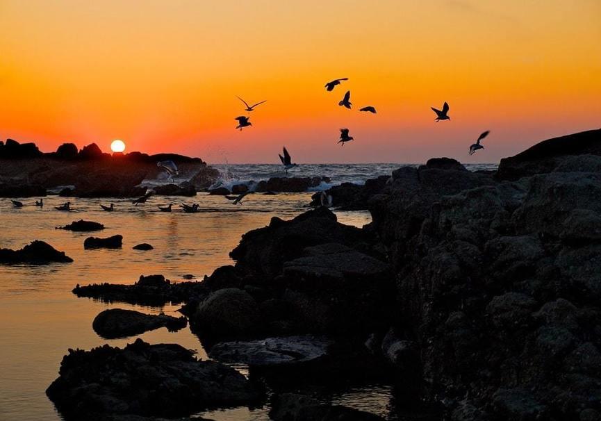 Medium puesta de sol baiona galiwonders  min