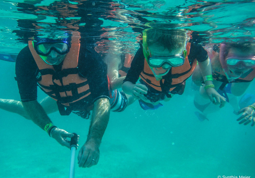 Medium snorkel with marine turtle   ecocolors tours