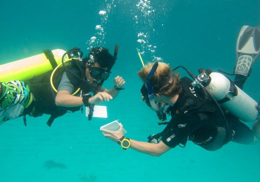 Medium open water xtc dive