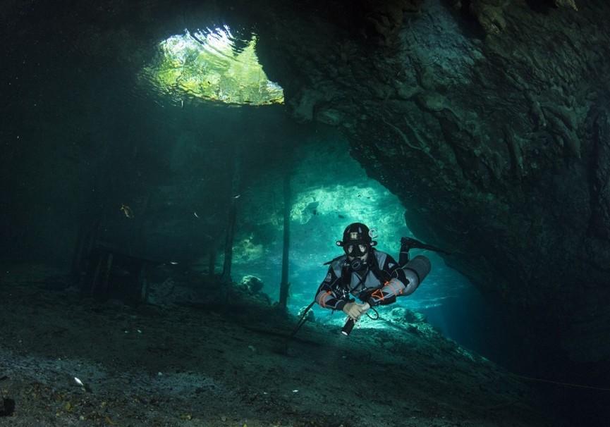 Medium cenote   casa cenote  manati