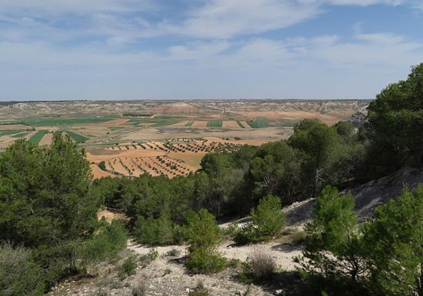 Medium yesares del valle del arroyo cedr%c3%b3n