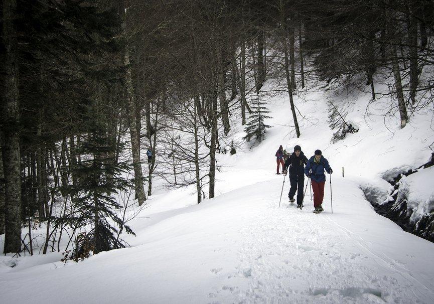 Medium pirineos06