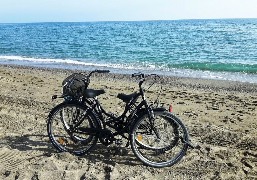 Medium bike rental   ebike malaga 2