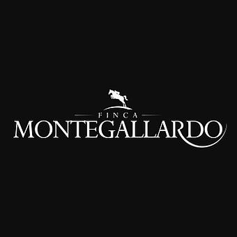 Logo gallardo