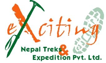Exciting logo  2