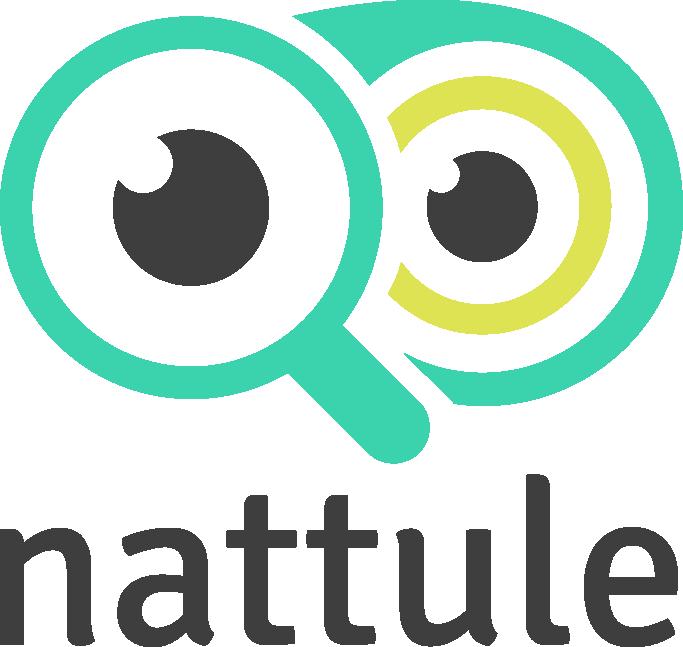 Nattule logo color