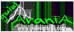 Logo header nou
